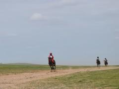 Говийн бүсийн уралдаанд эхний 10-т хурдалсан хурдан дааганууд