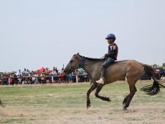 Соён гэгээрүүлэгч говийн V ноён хутагт Данзанравжаагийн мэлмий гийсний 215 жилийн ой, говийн бүсийн уралдаанд эхний 10-т хурдалсан хурдан их насны морьд